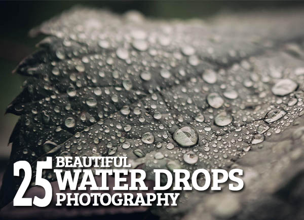 Beautiful Water Drops Photography – 25 Fresh Examples
