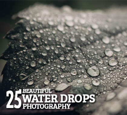 Post thumbnail of Beautiful Water Drops Photography – 25 Fresh Examples