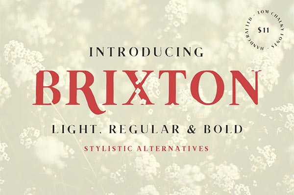 Awesome Font & Texture Bundle for Designers - 6