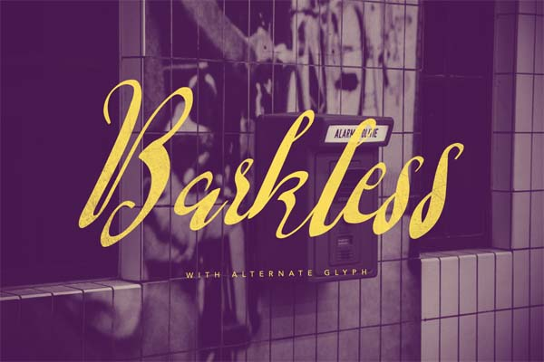 Free Stylish Fonts for Designers -33