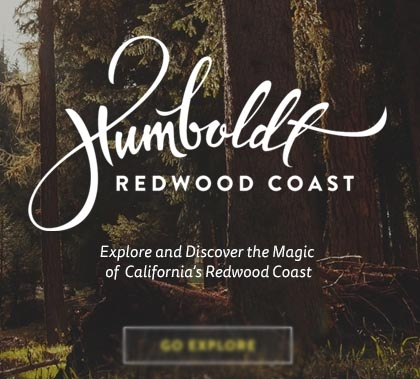Big Background Web Design – 15 Fresh Examples for Inspiration