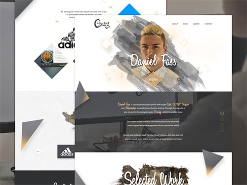Ongoing Dribbble Collection 2015 - 2016 By Daniel Fass x Czarny