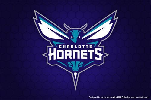 Charlotte Hornets Primary Mark by Ben Barnes