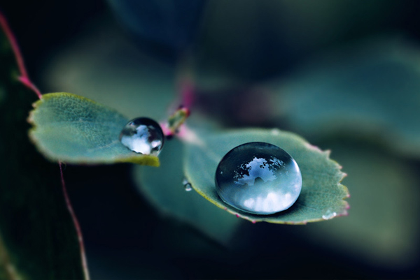 Water Drop Photography - 13