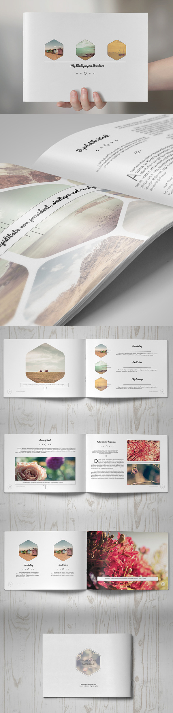 Multipurpose Clean Brochure Free Download