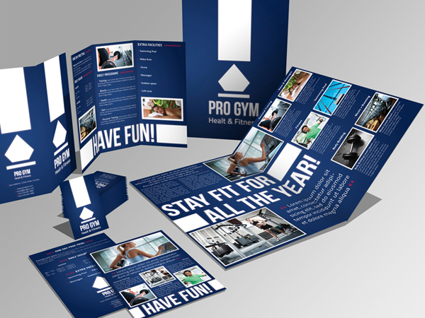 A4 Trifold Brochure and Flyer Design