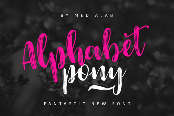 74 IN 1 FONT BUNDLE - 6