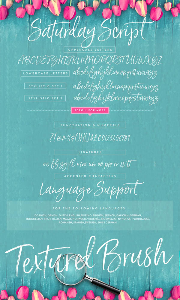 Saturday Script Brush Font - 15