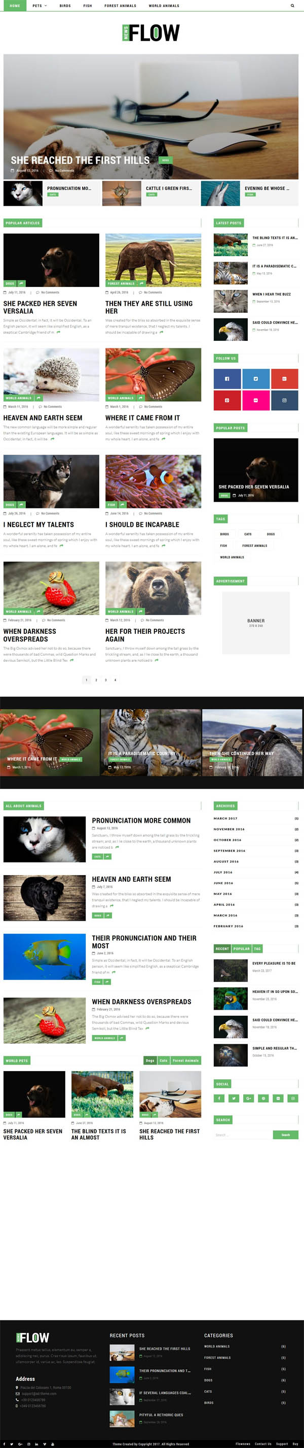 Flownews : Magazine and Blog WordPress Theme