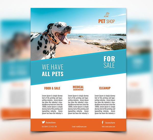 Pet Shop Flyer Template Design