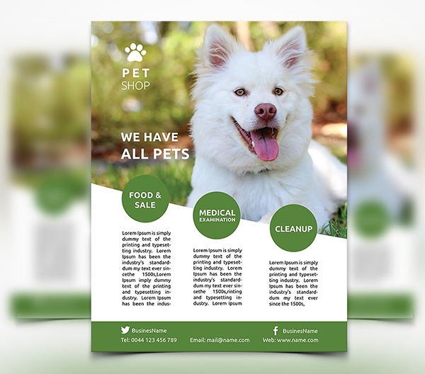 Pet Shop - Flyer