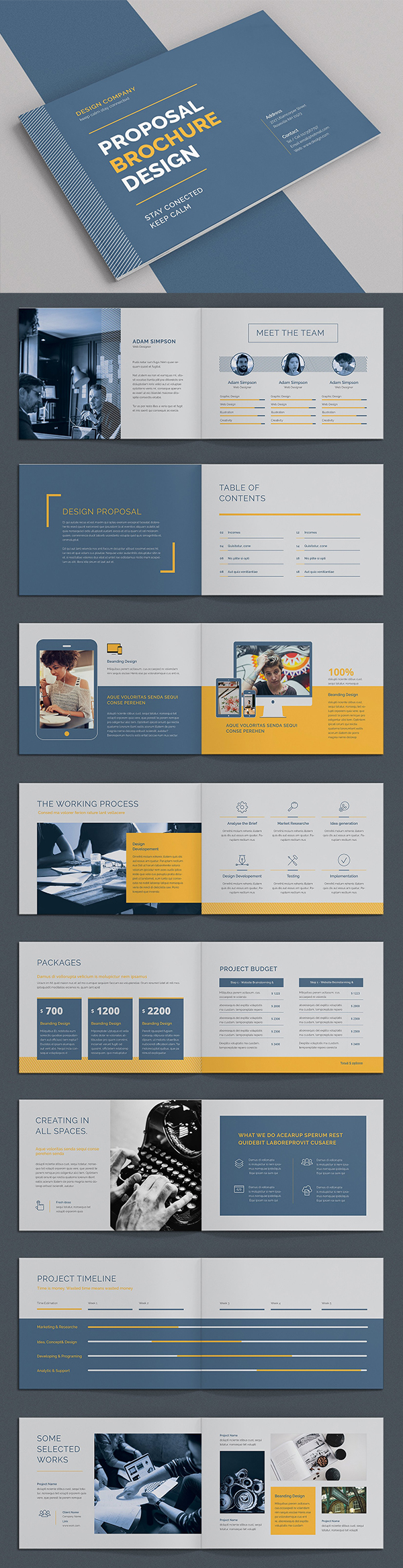 Proposal Brochure Template