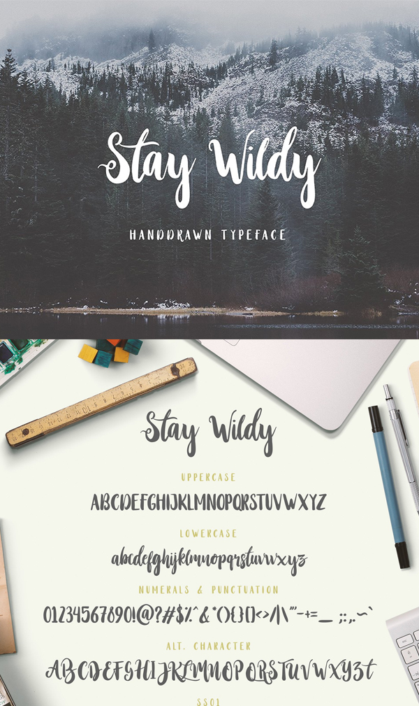 Stay Wildy Font