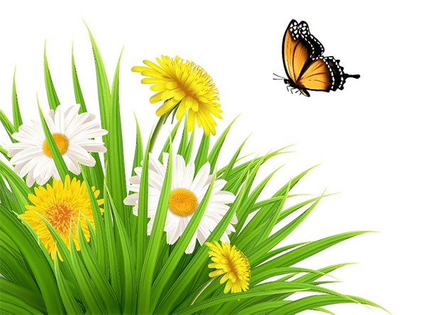 How to Draw a Nature Scene With Dandelions and a Butterfly in Adobe Illustrator
