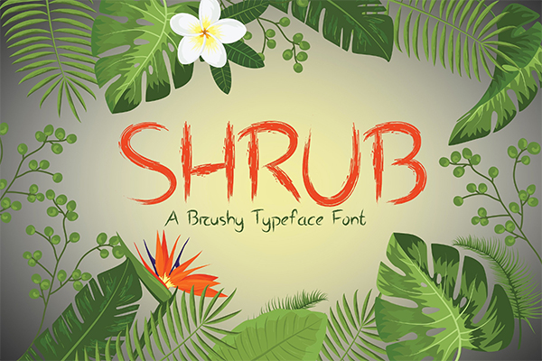 Shrub Brushy Font