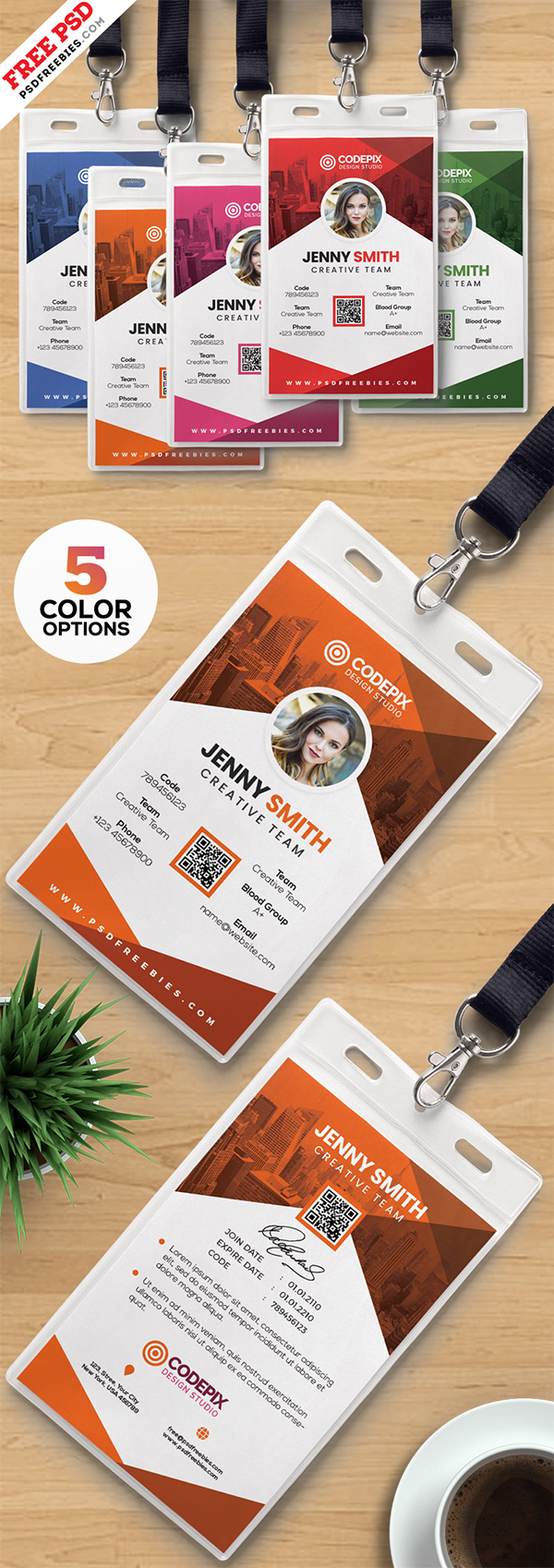 Photo Identity Card Templates PSD