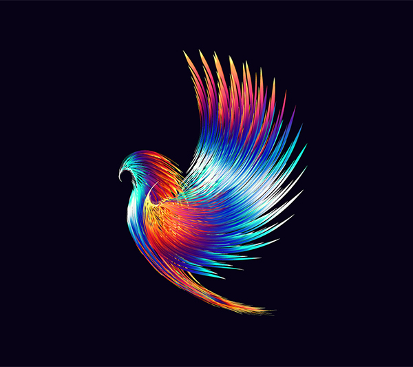 How to Creat Hawk Design in Illustrator