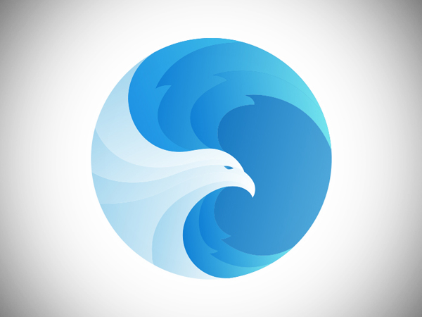 Eagle Logo Design