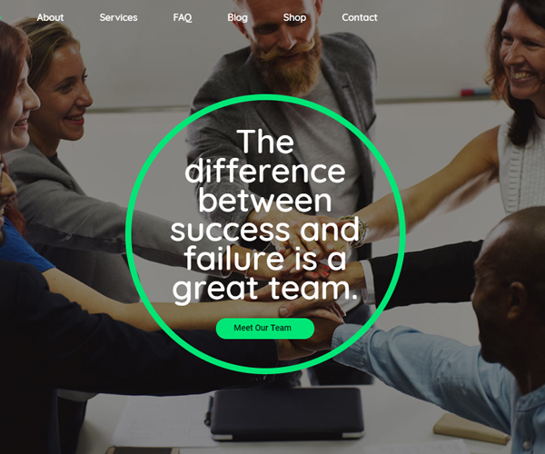 wordpress_themes_for_professionals