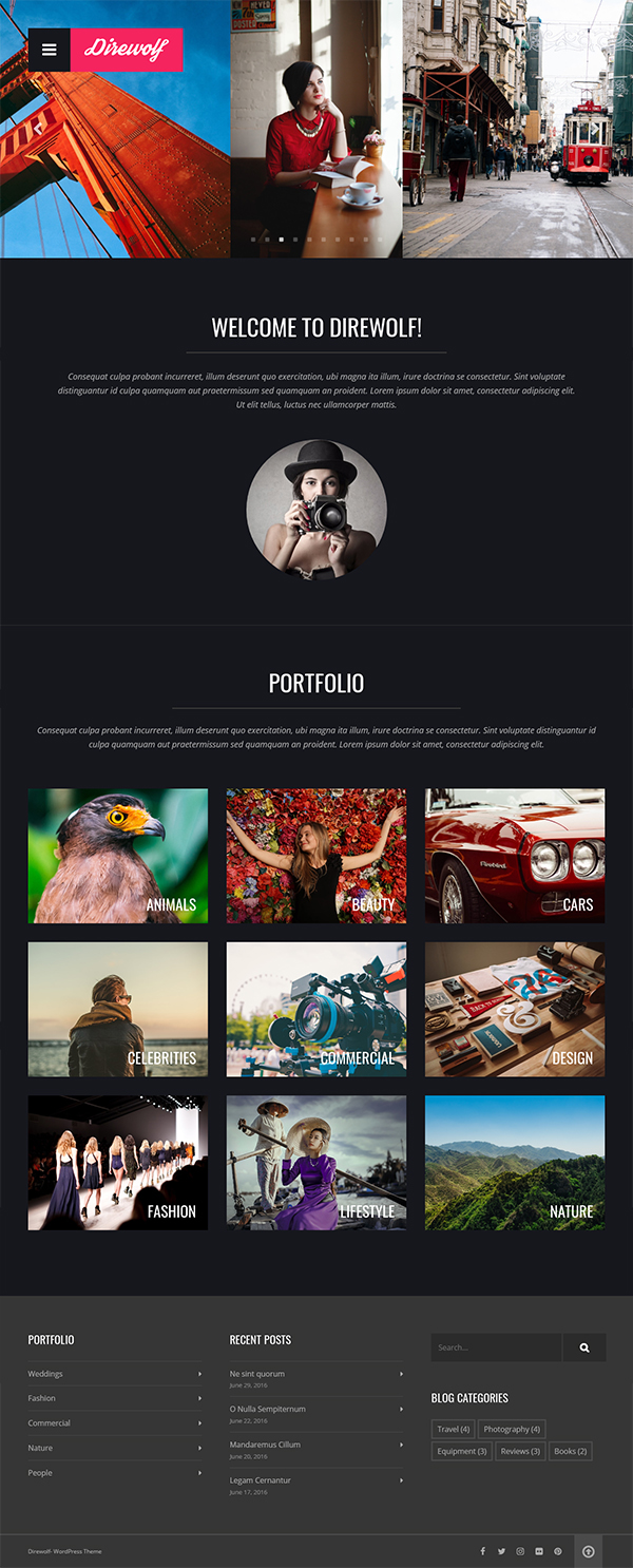 Direwolf - Photography WP Theme