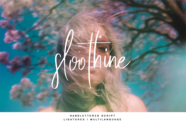 Sloothine By TJ Creative