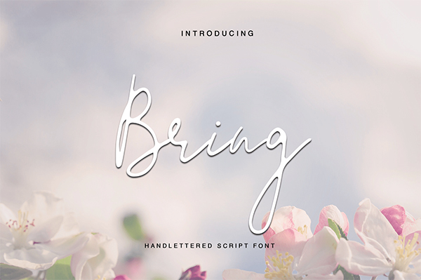 Bring By TJ Creative