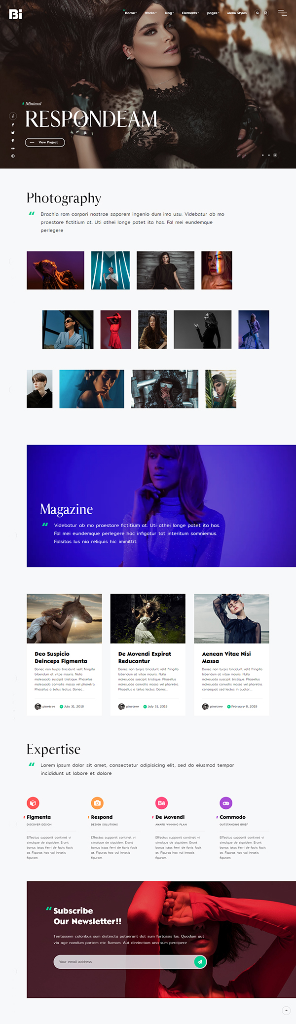 TheBi - Photography WordPress Theme