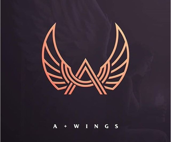 A + Wings Logo Design