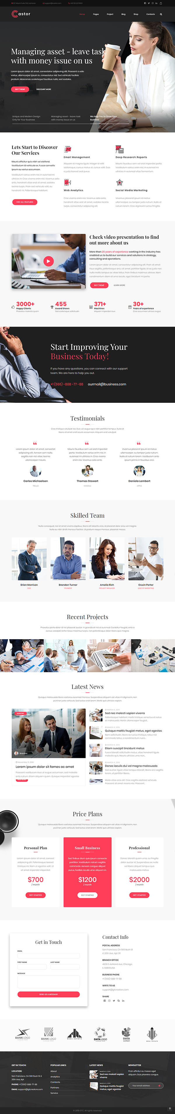 Castor - Consulting WordPress Theme