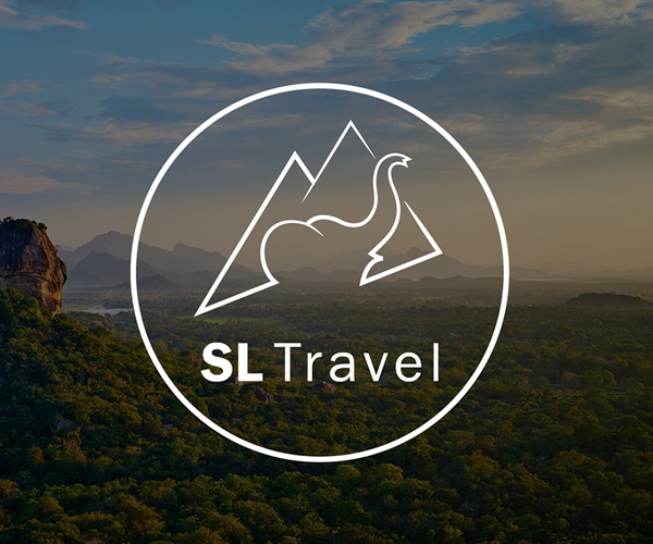 Travel Logo Branding