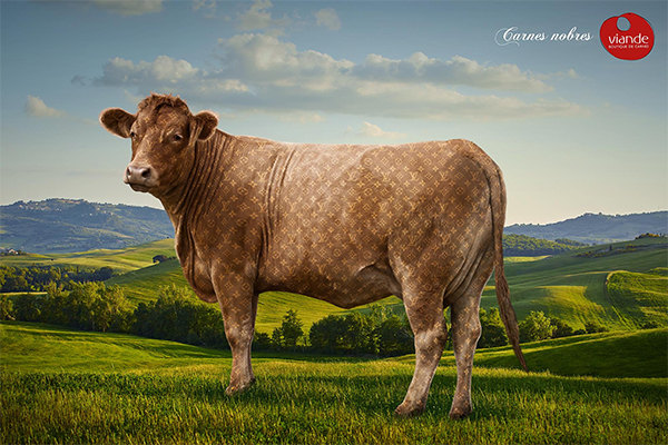 Noble Cow
