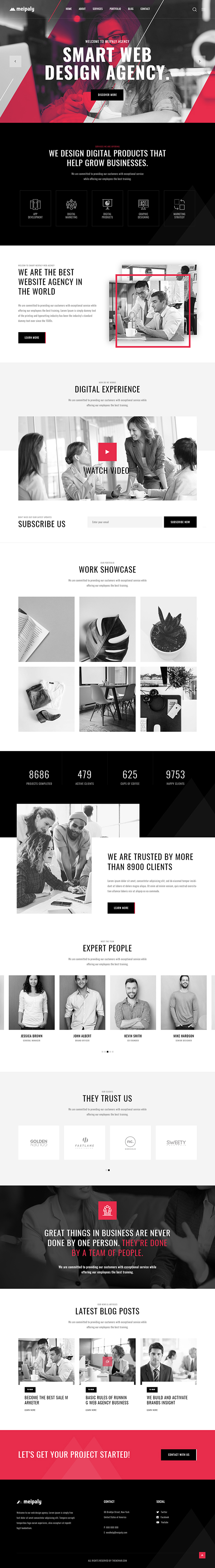 Meipaly - Digital Services Agency WordPress Theme