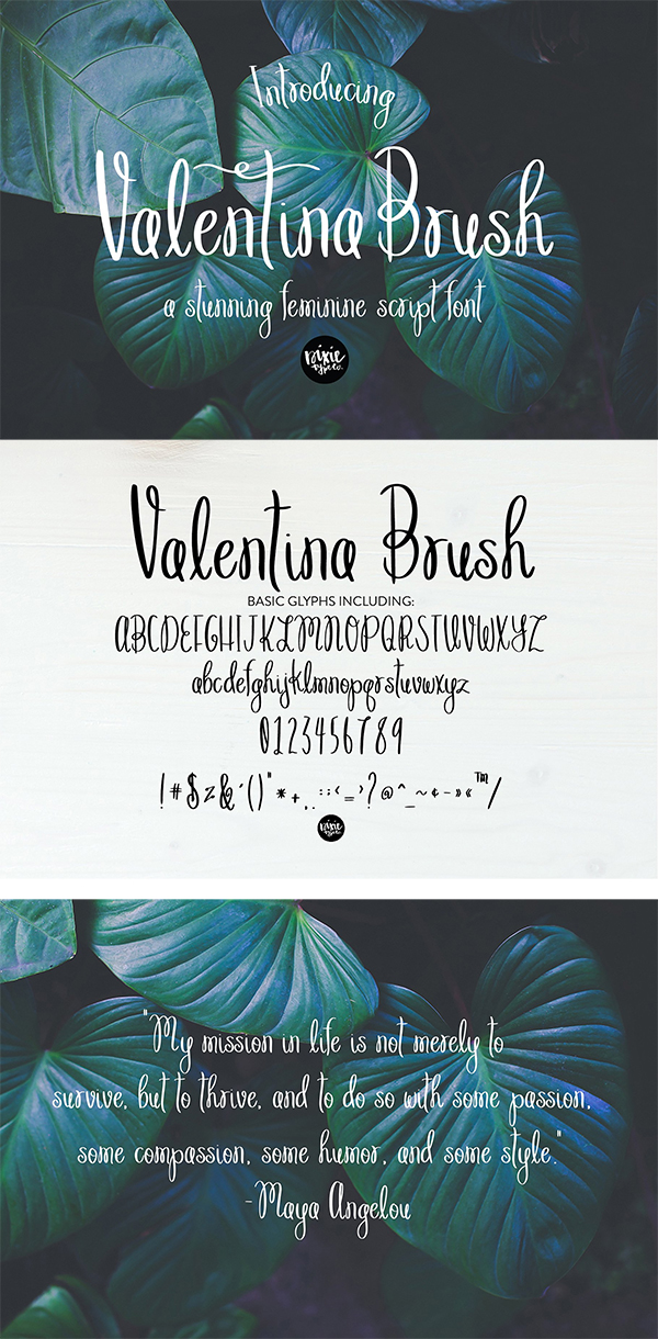 60 Best Brush Fonts For Graphic Designers - 57