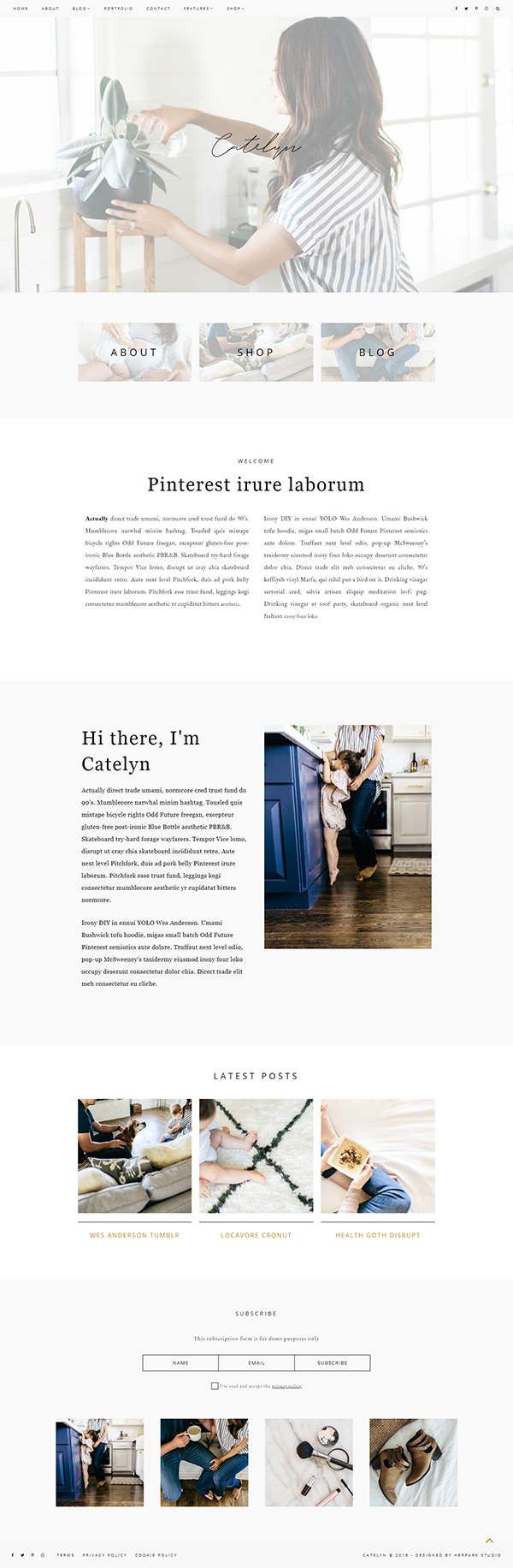 Catelyn - Blog + eCommerce Theme