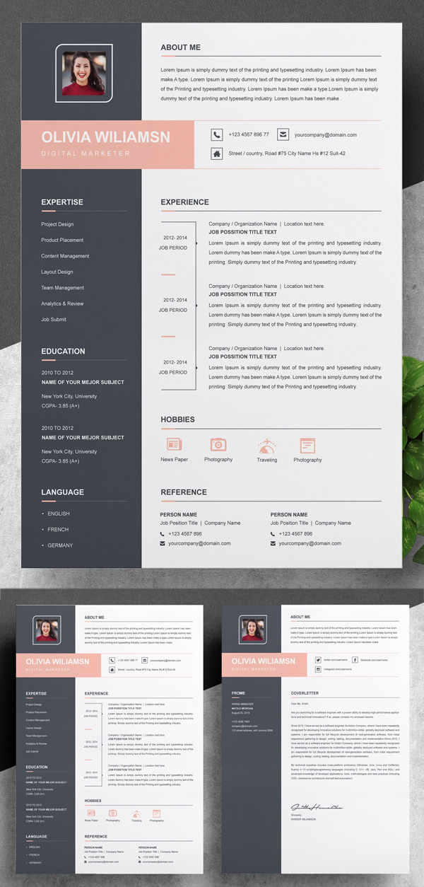 Professional Resume / CV Template