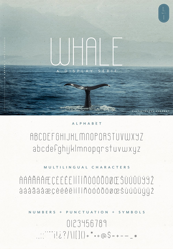 Whale Quirky Display Sans Serif