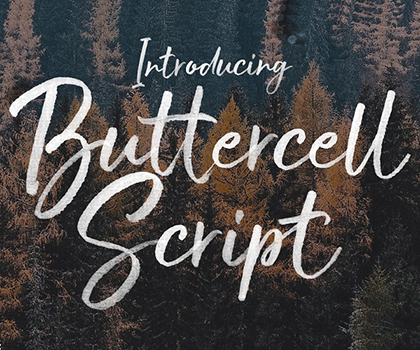 Fresh Creative Fonts For Designers