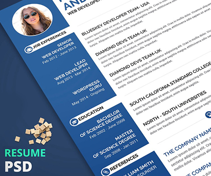 20 Creative Impressive Resume / CV Template Designs