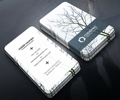 Post thumbnail of Best Stylish Business Card Template Design