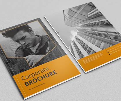 15 Multi-Purpose Business Brochure Templates