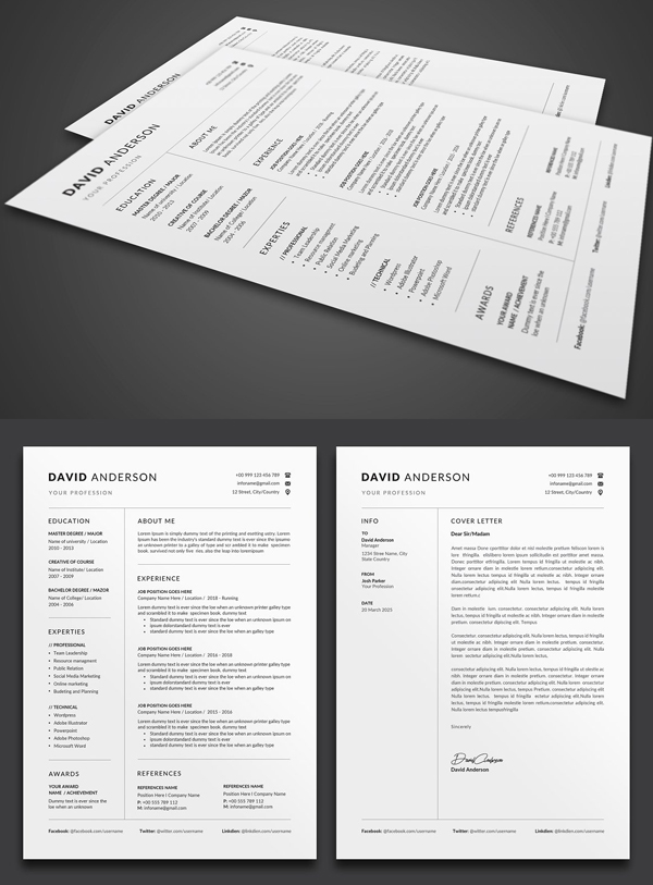 Perfect Resume CV Template