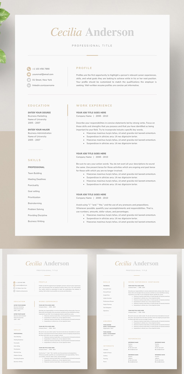 Modern 2 Page Resume Template