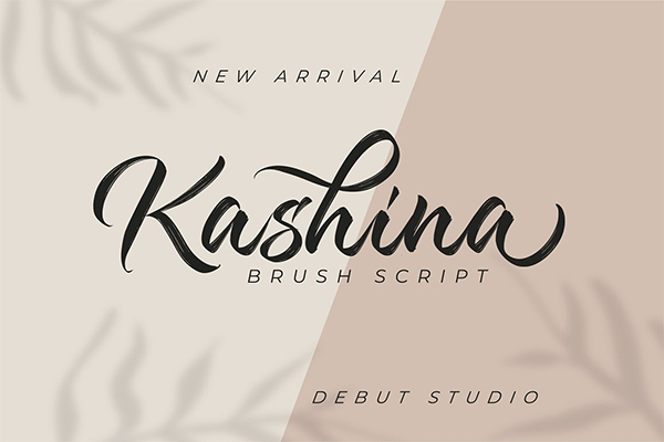 Kashina Brush Script