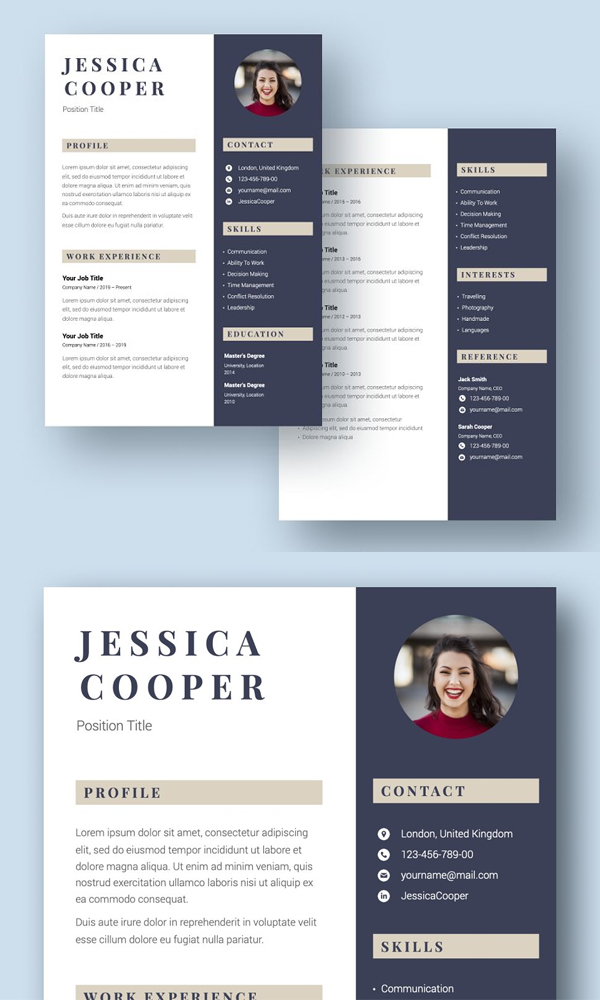 Best Professional Resume Template CV