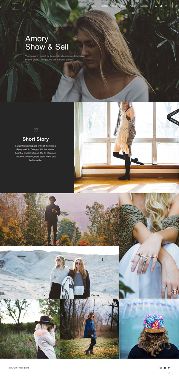 Amory | Responsive Multipurpose WordPress Theme
