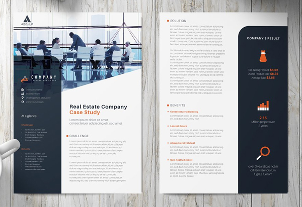 Case Study Flyer Template