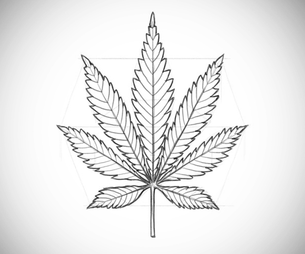 How to Draw a Pot Leaf