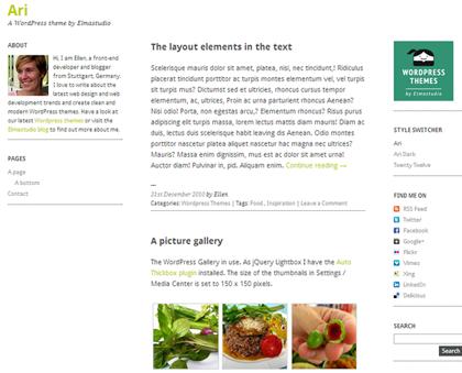 Ari Responsive WordPress Themes - 10