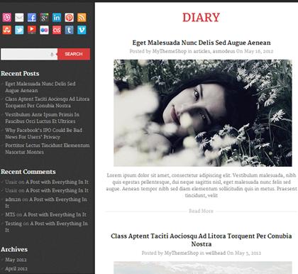 DIARY Pixel-Perfect Responsive WordPress Themes - 11
