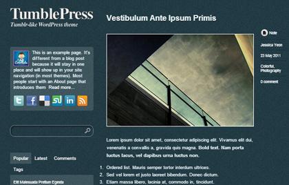 TumblePress Responsive WordPress Themes - 13